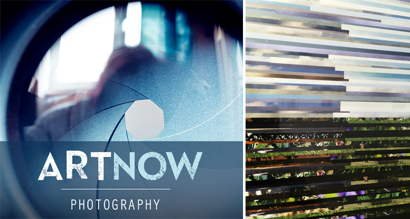 Art Now: Photography 2016 at the Ann Arbor Art Center.