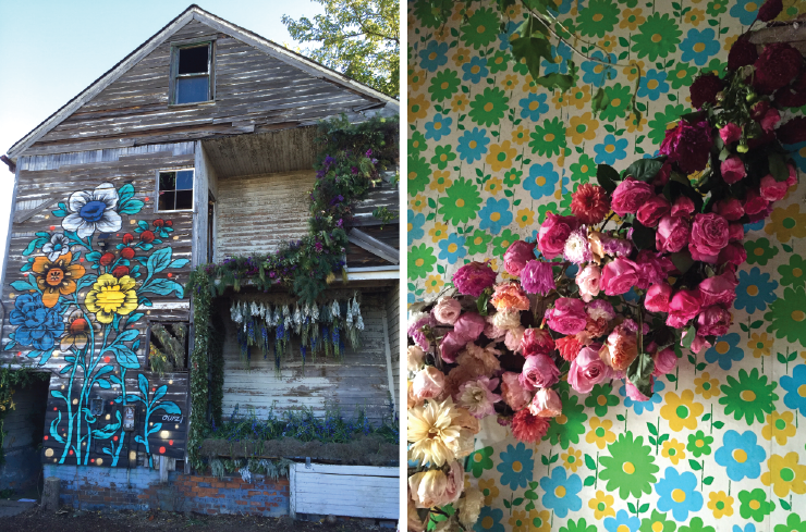 Lisa Waud brought beauty to a crumbling house