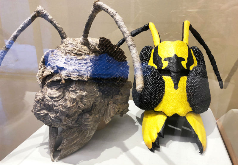 Barrett Klein's Insect Masks