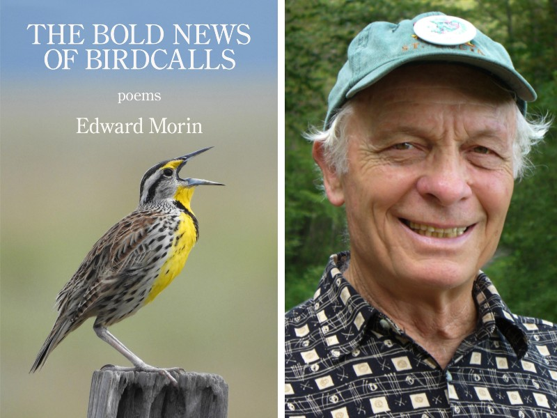 Ed Morin and his book The Bold News of Birdcalls