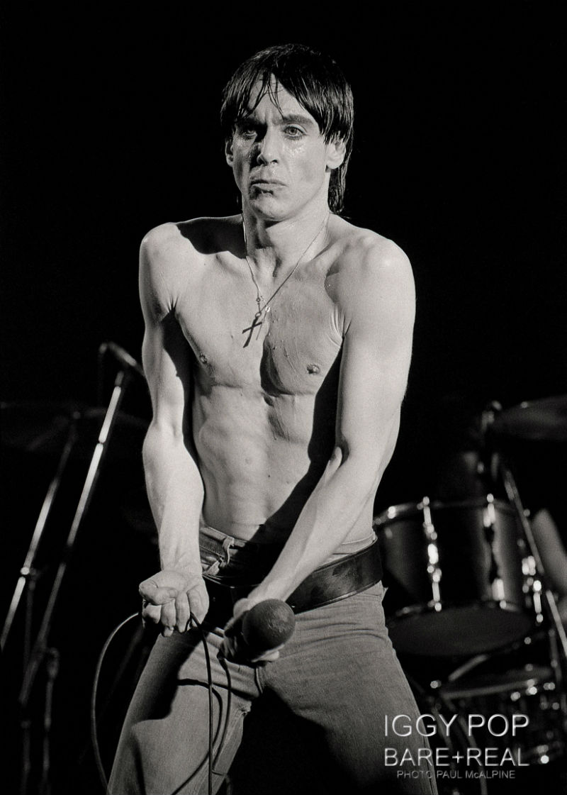 Iggy Pop by Paul McAlpine