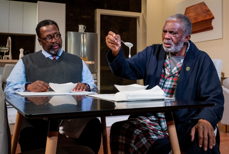 Wendell Pierce and Charlie Robinson in UMS's Some Old Black Man. Photo by Doug Coombe.
